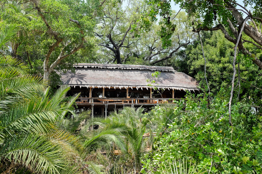 Jao Camp, Jao Concession / Okavango Delta / Botswana