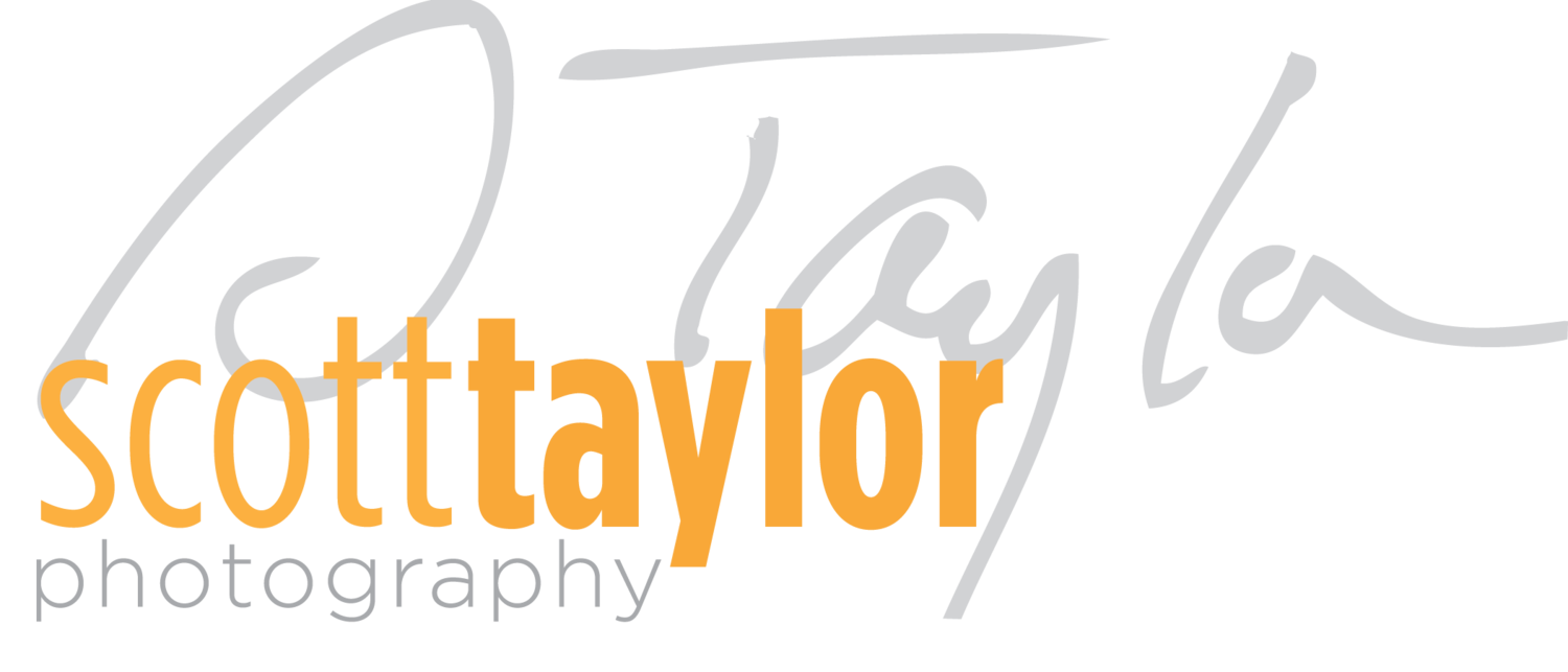 Scott Taylor Photography