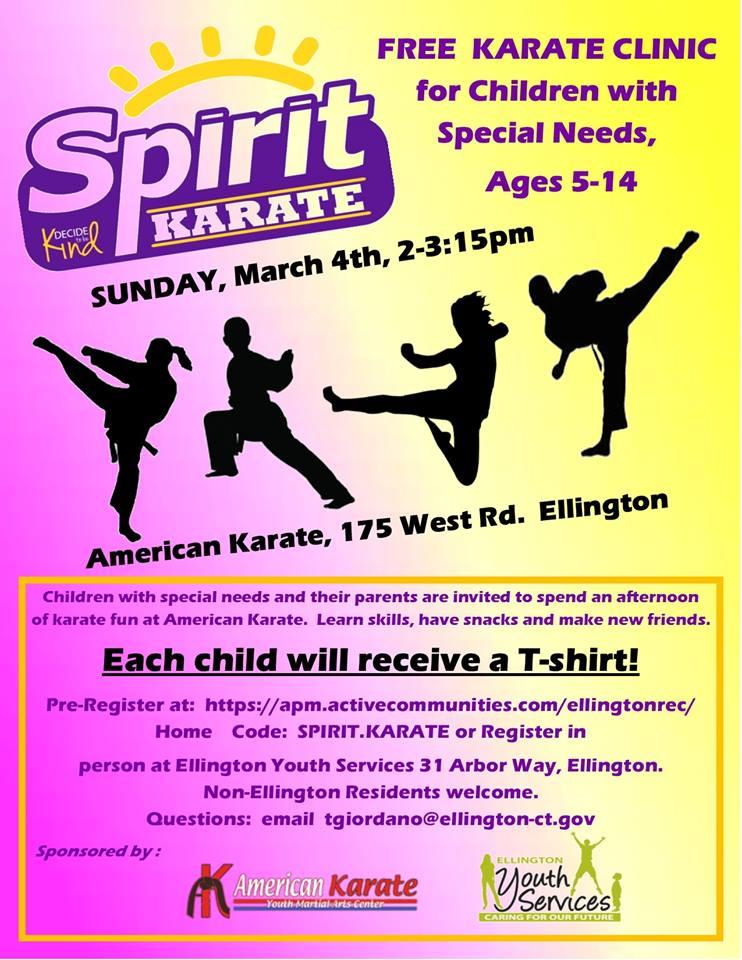 Spirit Karate2.jpg