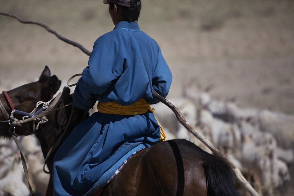 Mongolian Goat Herder on Horseback