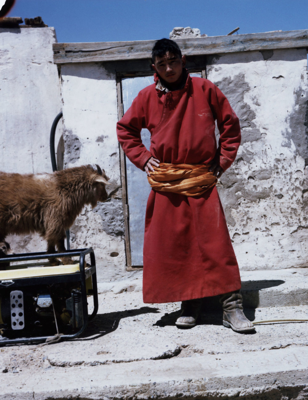 Mongolian Goat Herder