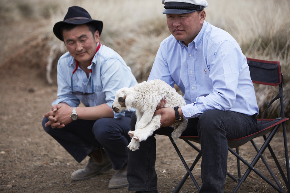 Mongolian Herders Hold a Baby Goat