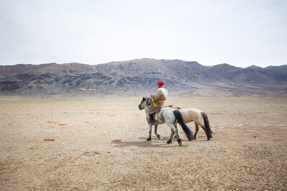 Horseback Herder on the Mongolian Landscape
