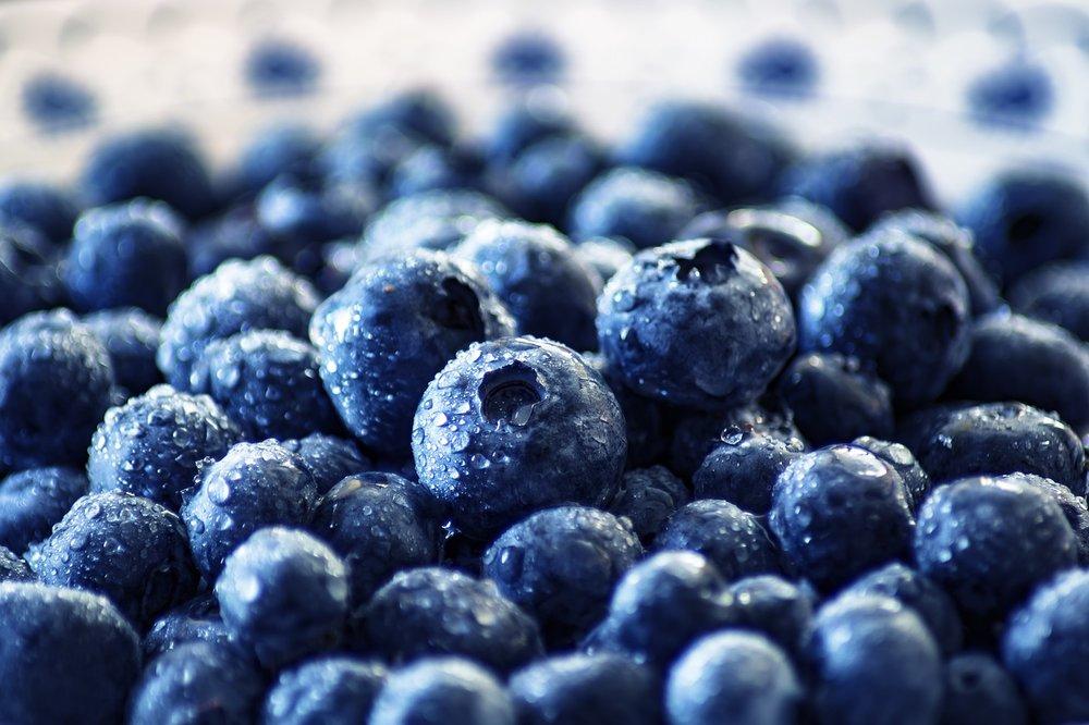 blueberry-3460423_1280.jpg