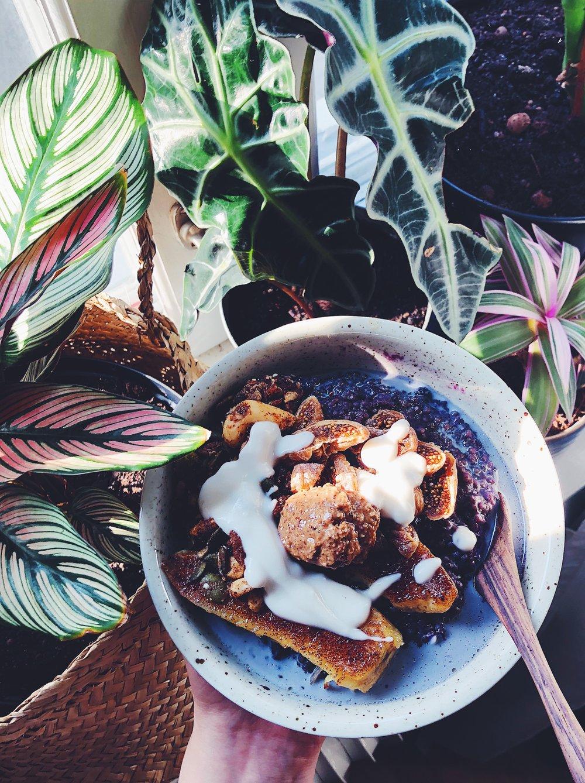 Hirsgröt med blåbär och stekt banan