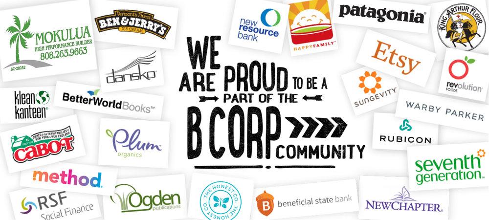 B Corp Community_Graphic.jpg