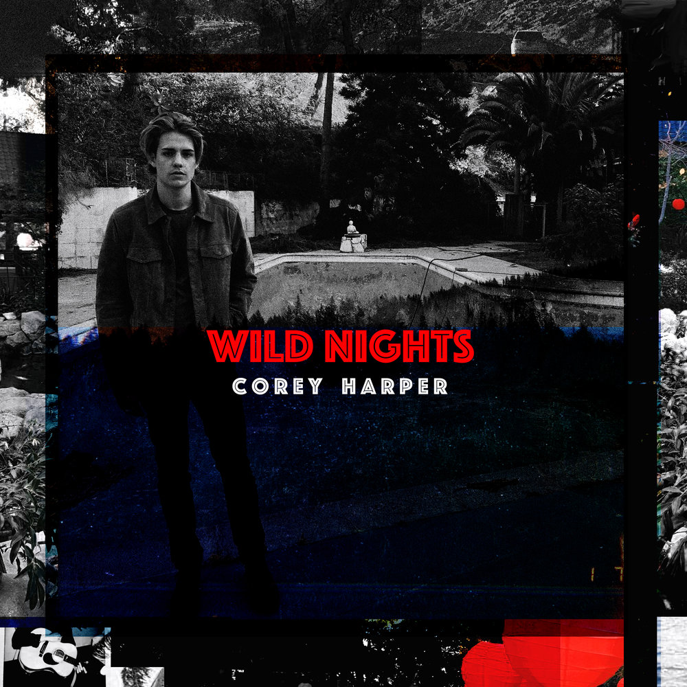 wild nights cover final.jpg