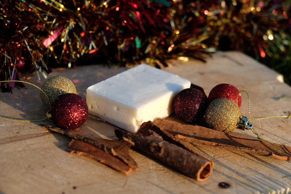 7. Cinnamon christmas outdoor DSCF2646.JPG
