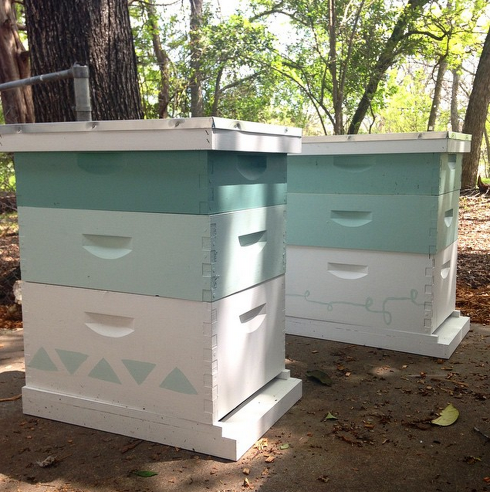 Beehives, post assembly and painting.