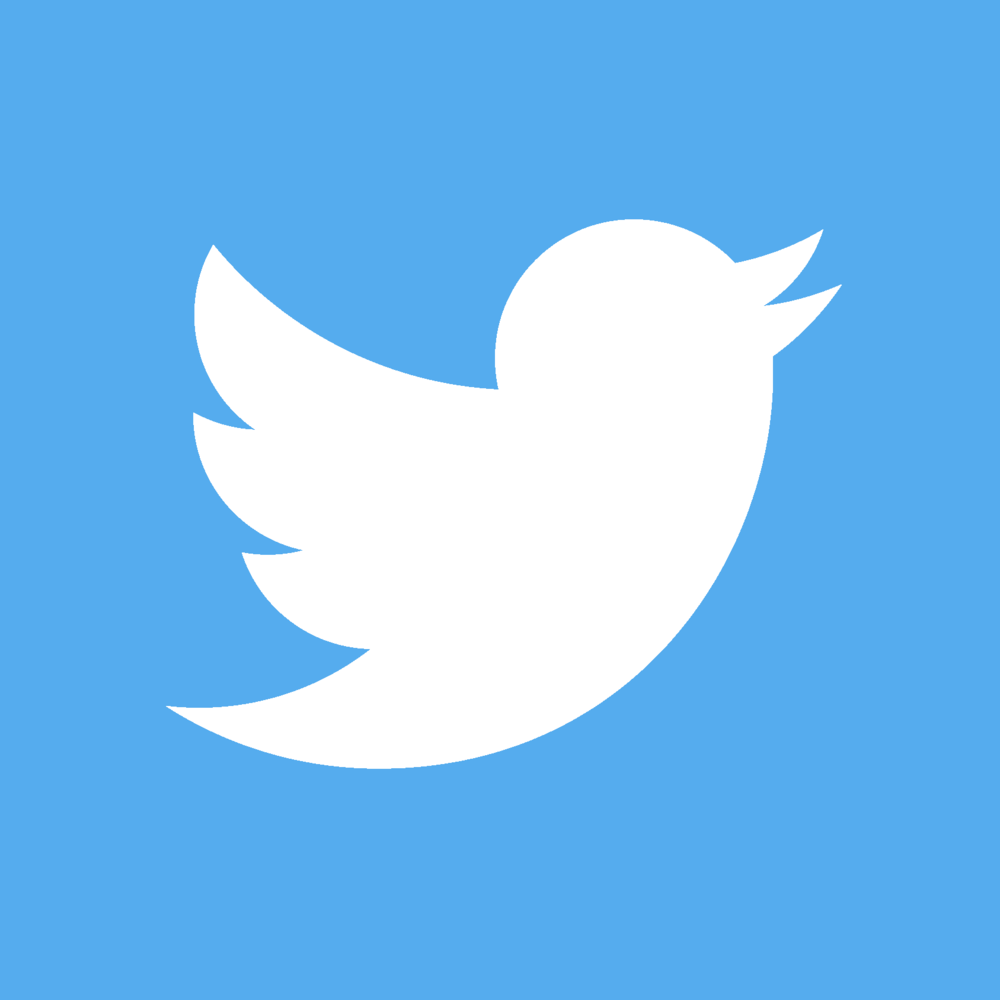 TwitterLogo_#55acee copy.png