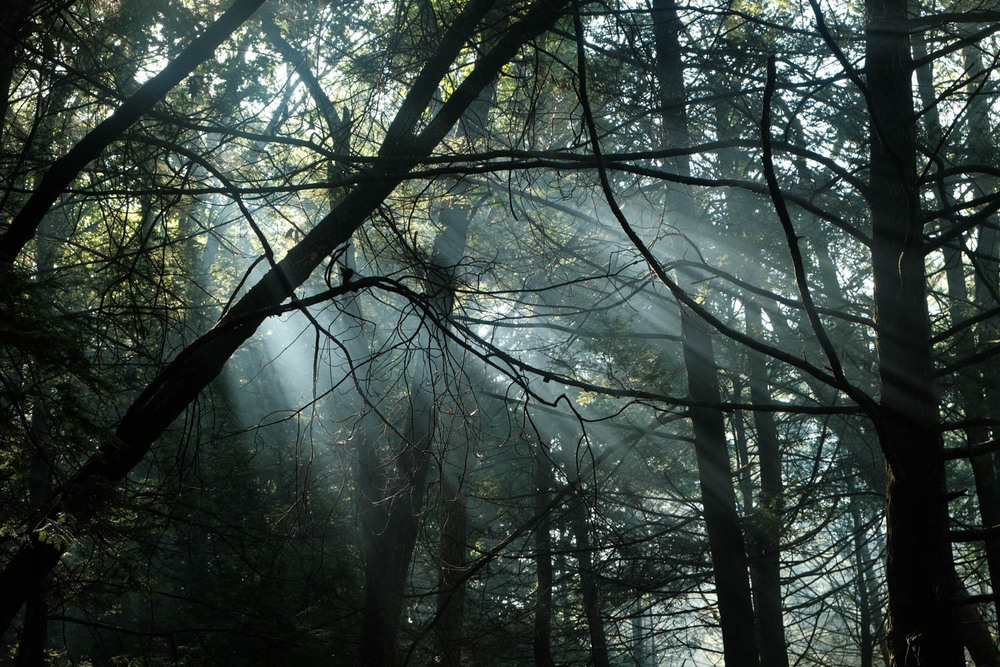 Jim Thorpe Camping-1333.jpg