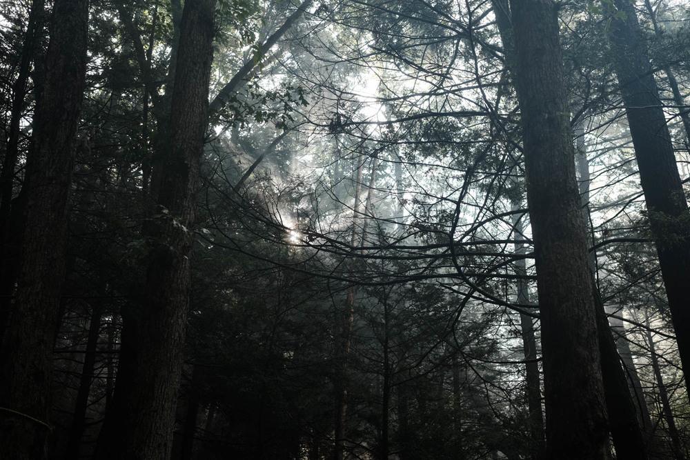 Jim Thorpe Camping-1218.jpg