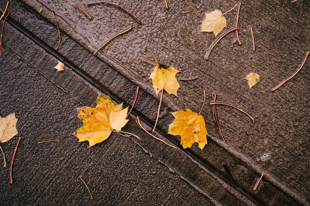 November-Random-3444.jpg