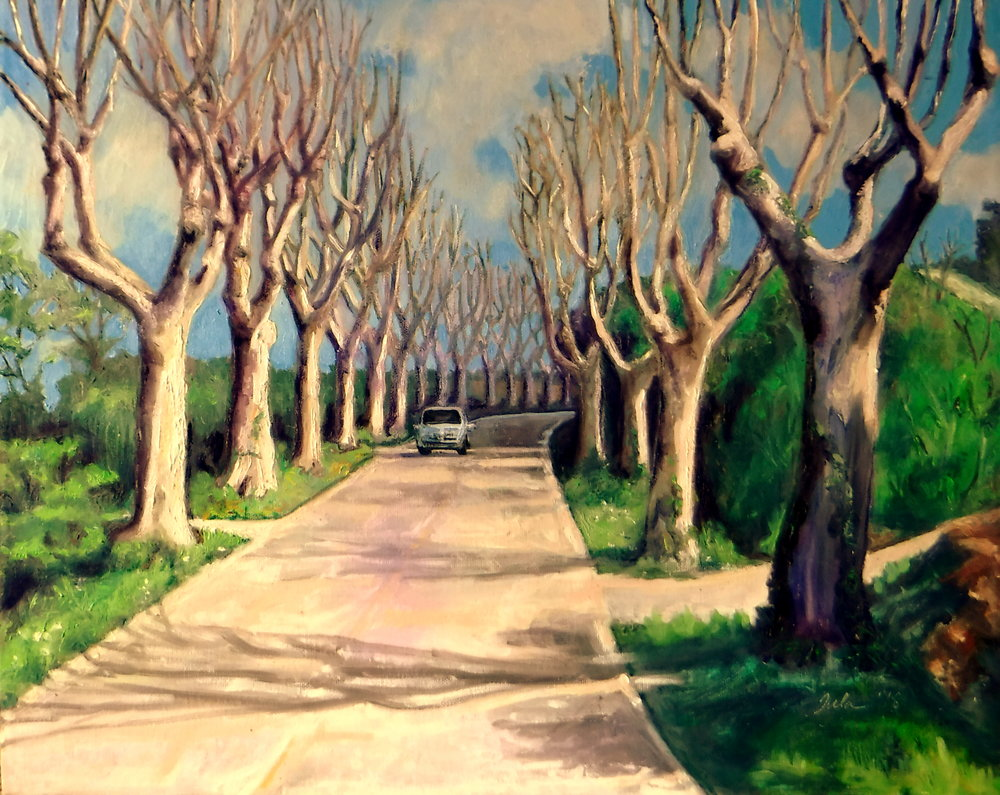 The Plane Trees of Provence- Copyright 2018