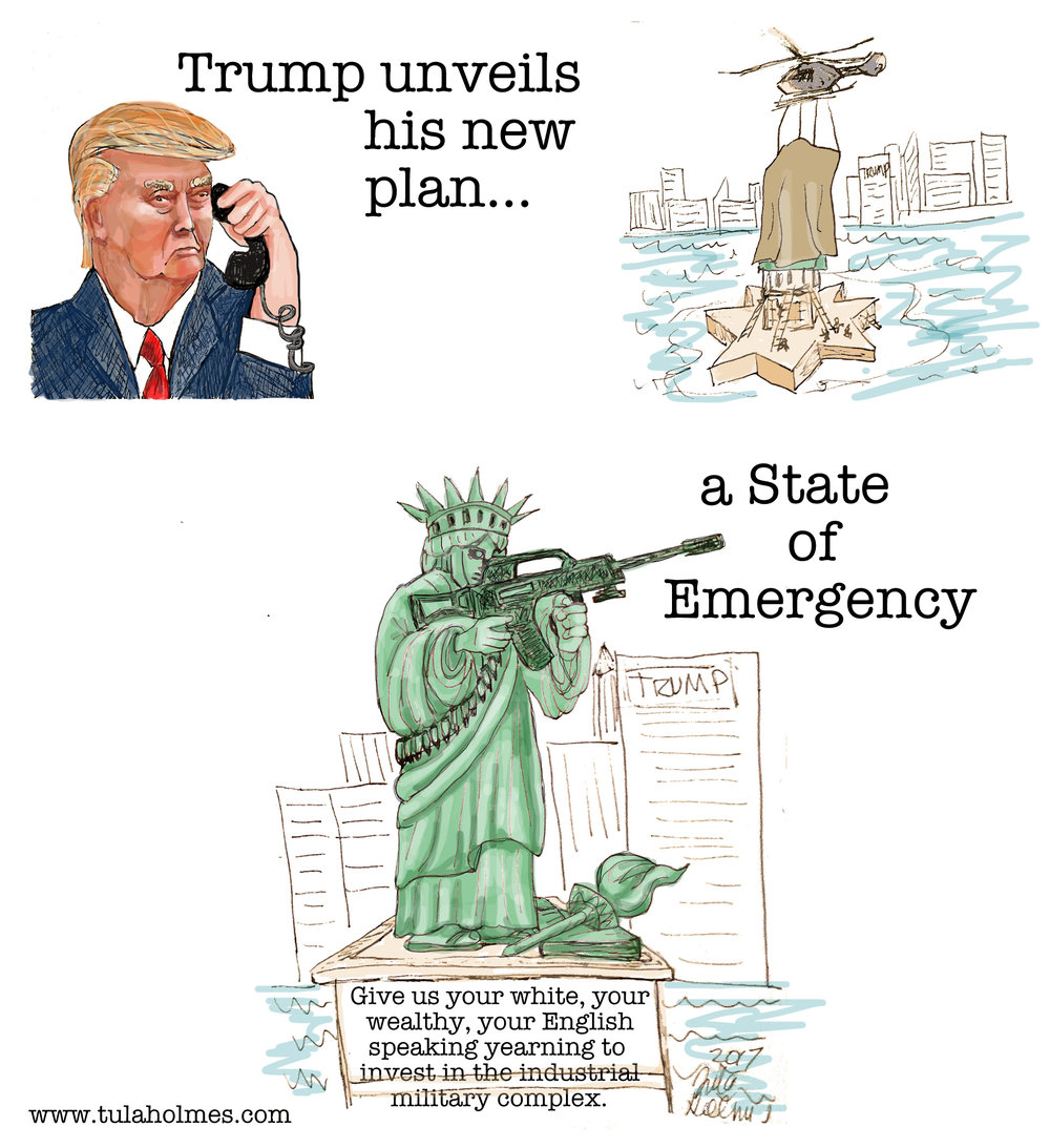 A State of Emergency- Copyright 2019