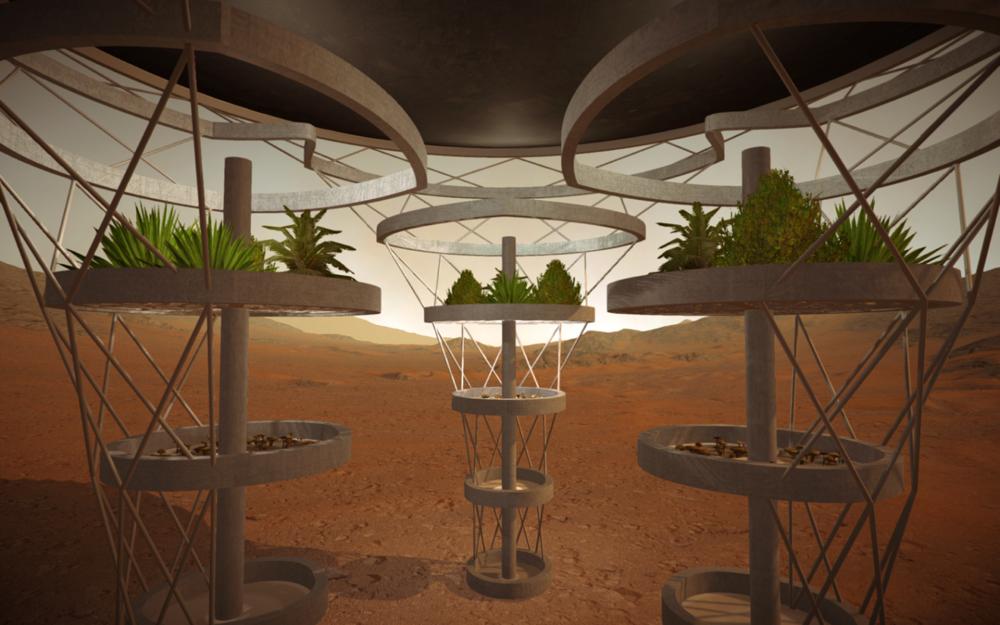 InteriorStructure (1).png