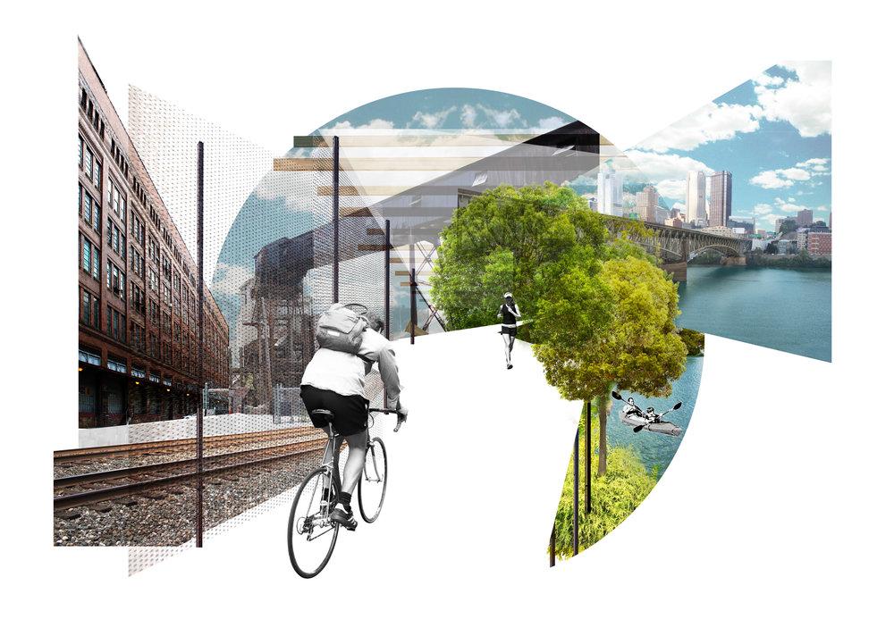 Bike_Collage.jpg