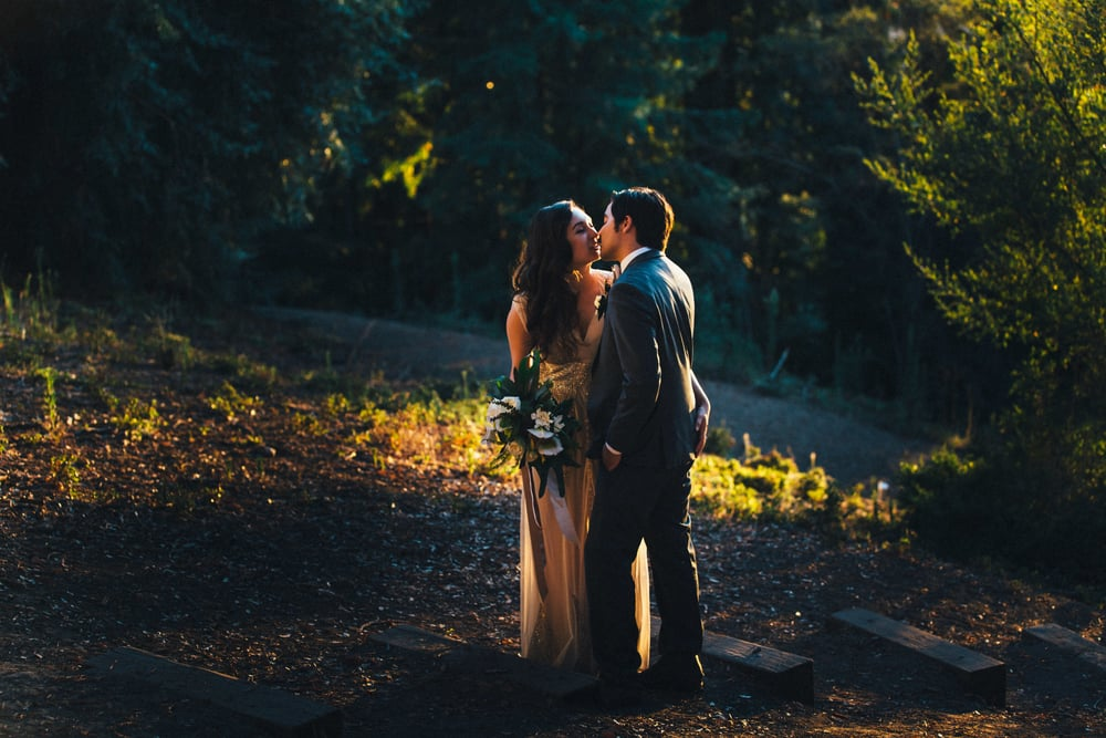 Copyright, Nicole diGiorgio - Sweetness and Light Wedding Photography