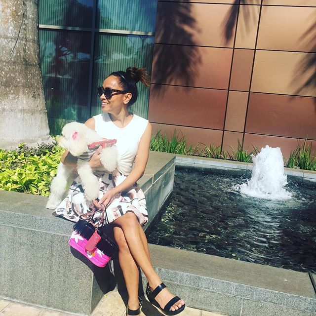 Enjoying the sun 🐩☀️#breaktime #sukoshiboy #honolulu #poshdhi #chanel #wardvillage #petfriendly