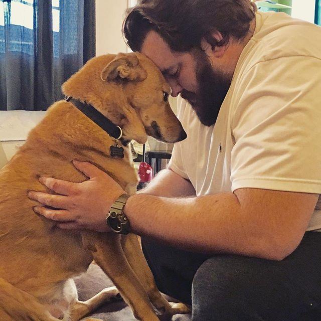 #lewisthedog healing me