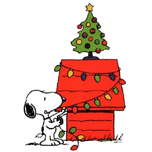 Merry Christmas & Happy Holidays.  #merrychristmas #happyholidays #giveback