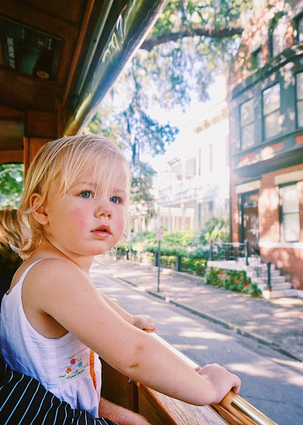 Savannah, Georgia Trolley Tour