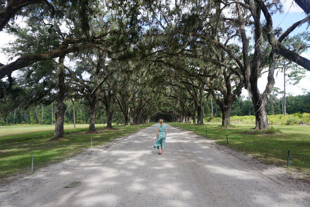 Wormsloe Historic Site, Savannah Georgia