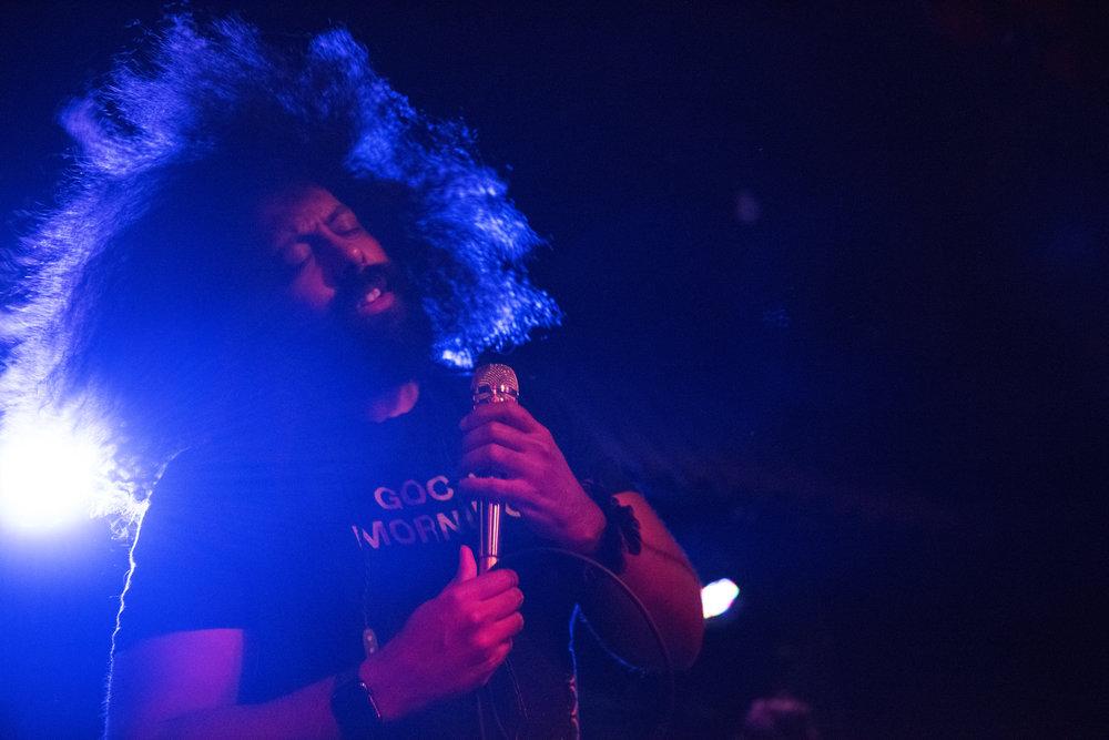 Reggie4.jpg