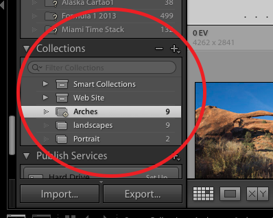 Smart Collections have that little gear icon.