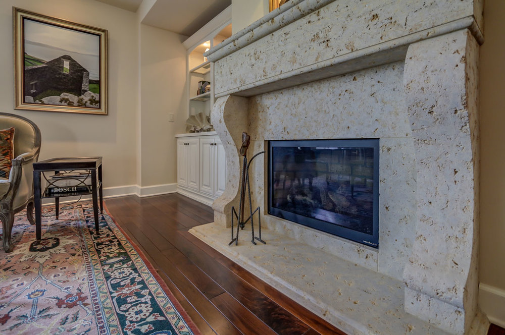 123 W Washington Ave #1007 Madison, WI 53703 - Fireplace.jpg