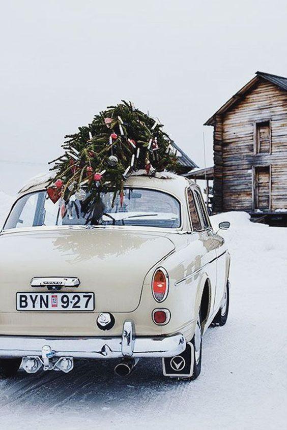 Foto: Pinterest