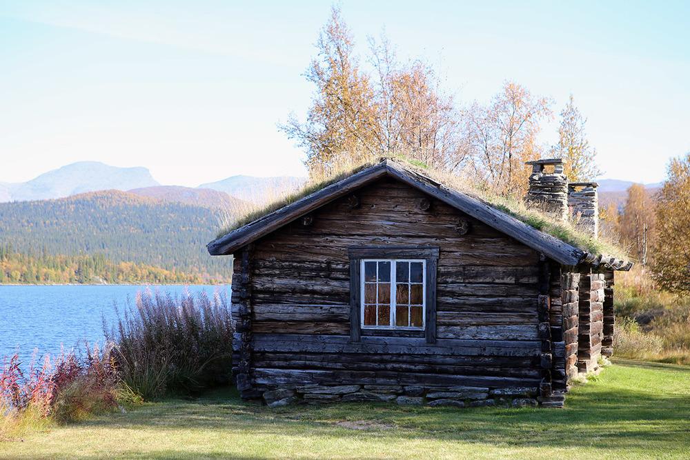 Fatmomakke, den urgamla samiska kultplatsen i Västerbotten i höstskrud med Marsfjället i bakgrunden, foto Stein Bjørn
