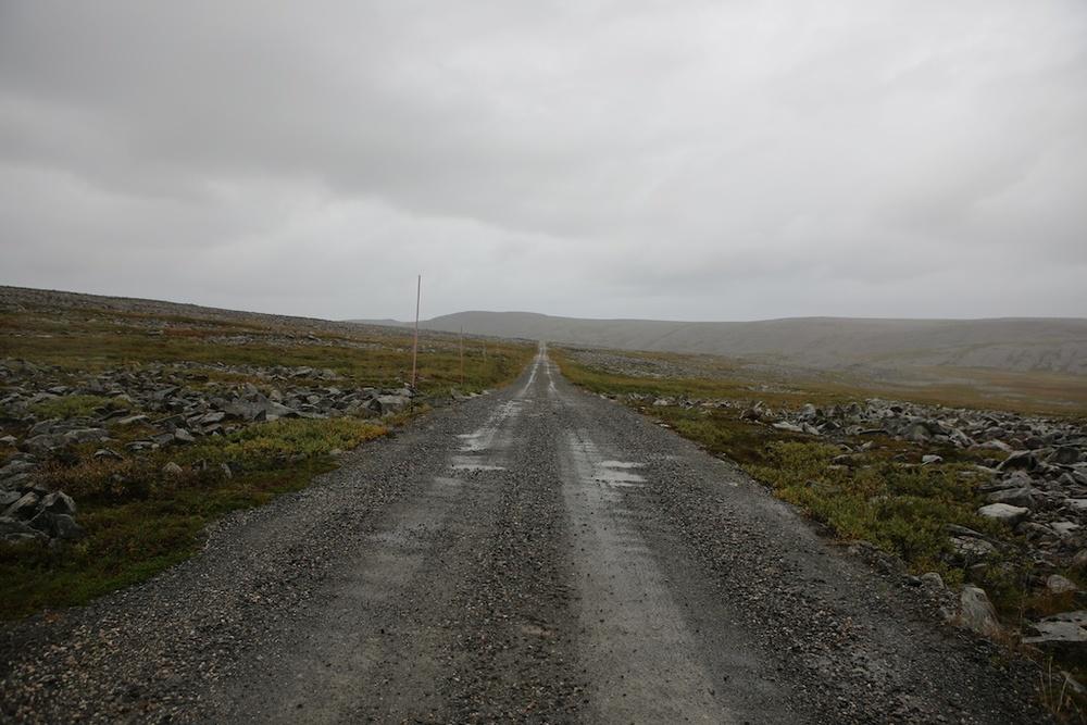 Foto Stein Bjørn