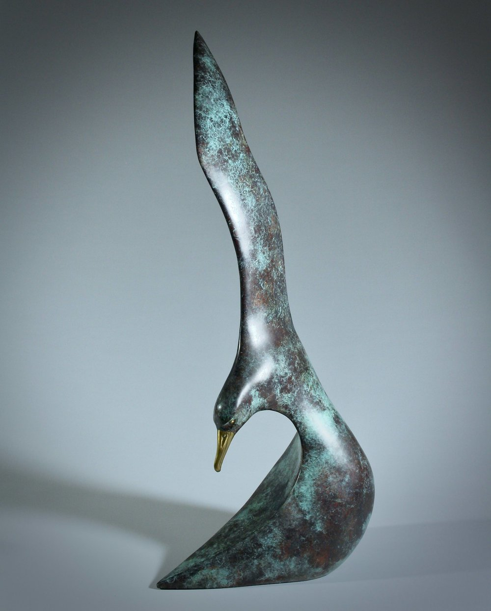 'Soaring Waves'     Dimensions:  64x29x19cm   Material:    Bronze Ltd. Edt. 6/25 - Chalkos Art Foundry   Artist Statement:  Graceful, unconventional lines are used in this sculpture to form volume and expression. Marrying the lines of the wing and the head of the Albatross to form a wave, defines the Albatross in harmony with its' environment.   Awards:   2014 Best Composition Award – Wildlife Art @ Discovery, Canberra