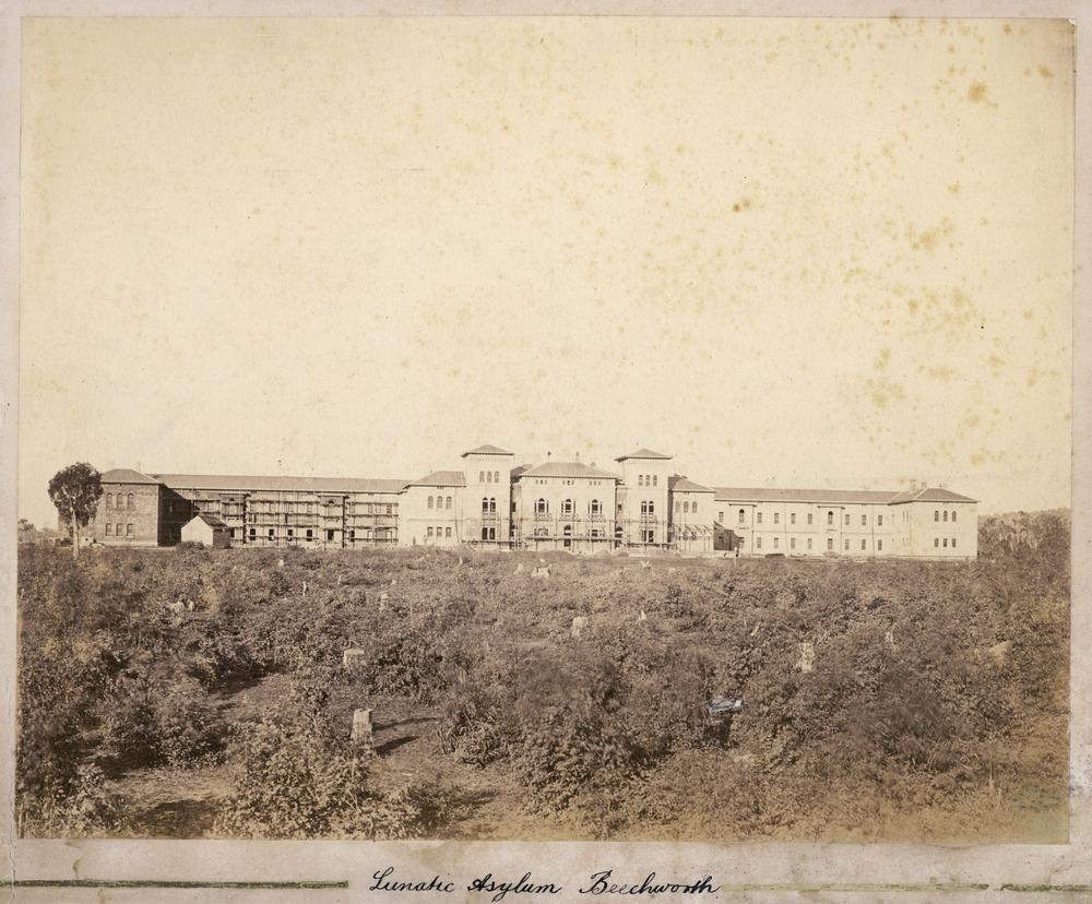 Lunatic Asylum 1930's