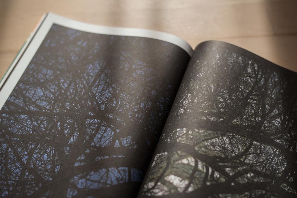 Sechs komplette Seiten in der MUH mit meinen Bildern! Gigantisch!  Magazin für Bayerische Aspekte Nr 19 -  www.muh.by