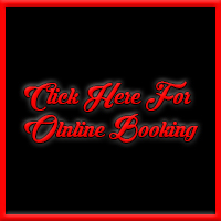 online-female-stripper-booking