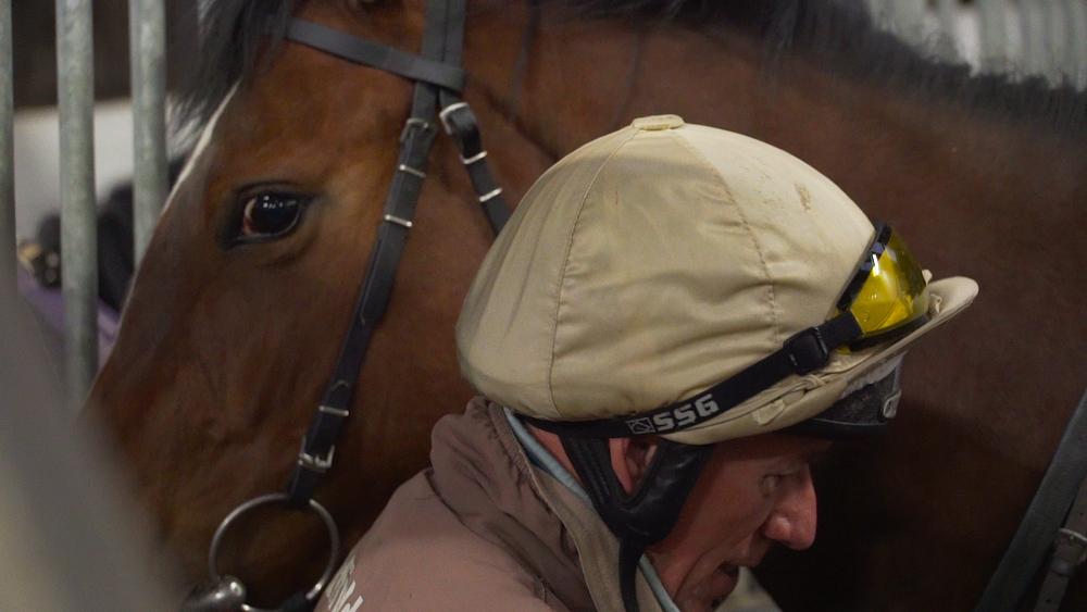 Horse_AnnDuffield.jpg