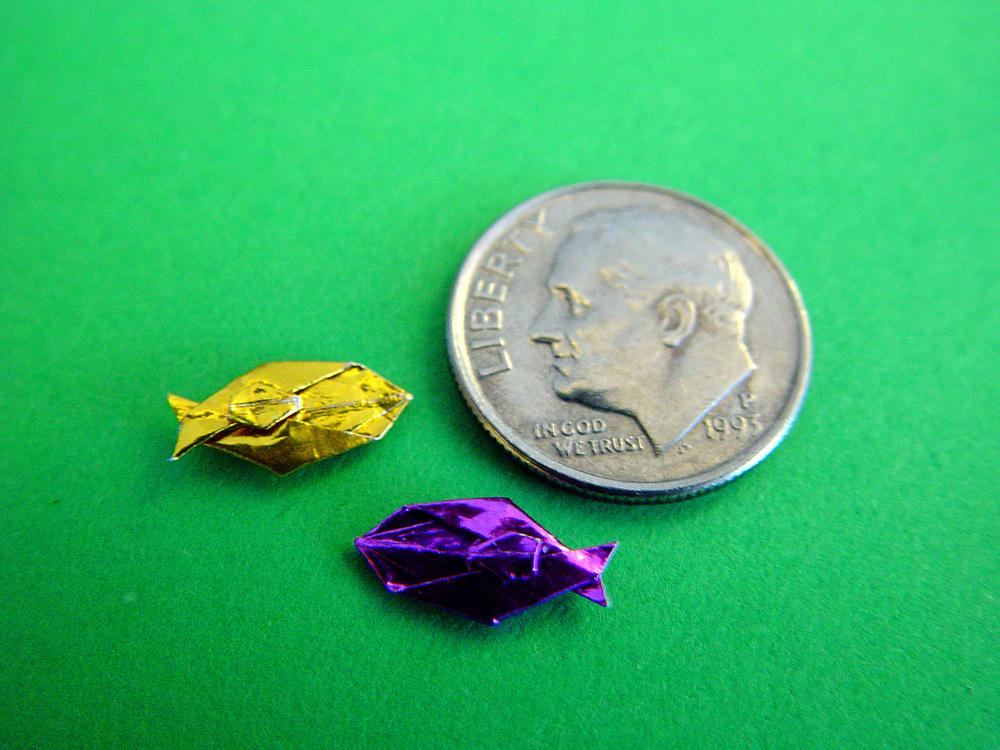 Miniature fish AND photo credit: Wensdy Whitehead