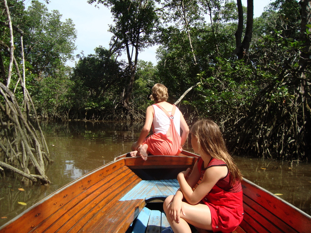 Learning on the road - mangrove ecosystems, hunting for proboscis monkeys in the wild
