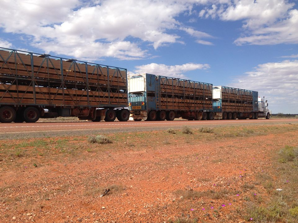 ROAD TRAIN, Northern Territory, Australai