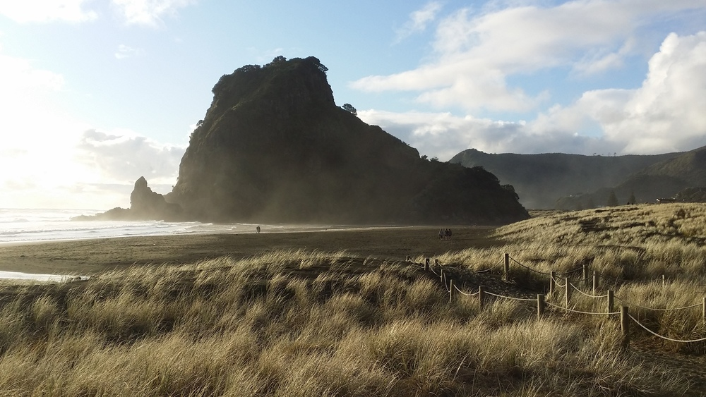 Lion Rock, Piha Beach, Auckland, New Zealand
