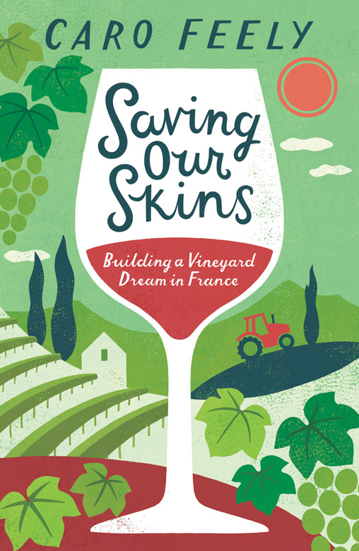 A cover I did a while ago for Summersdale. Caro Feely's memoir about buying a french vineyard