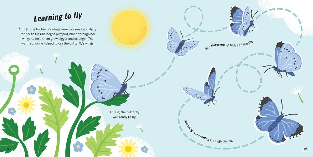 Butterfly-BLAD-18.jpg