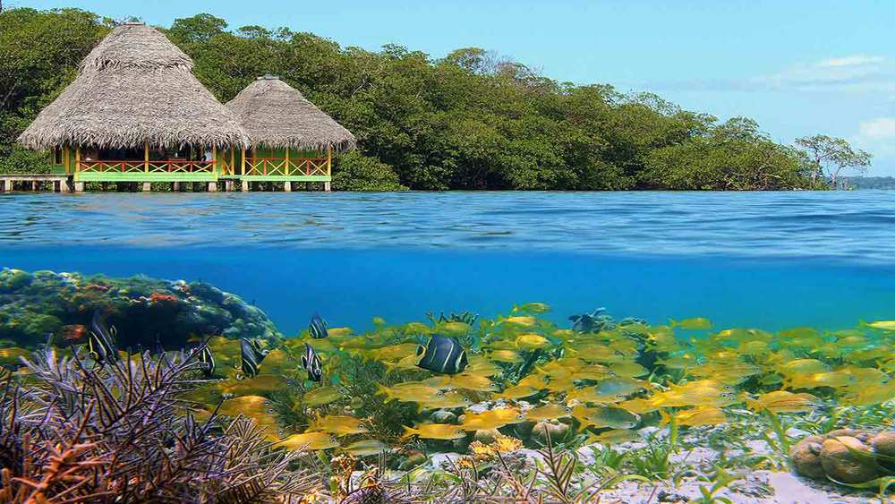 Bocas-Del-Toro-6023445-smalltabletRetina.jpg