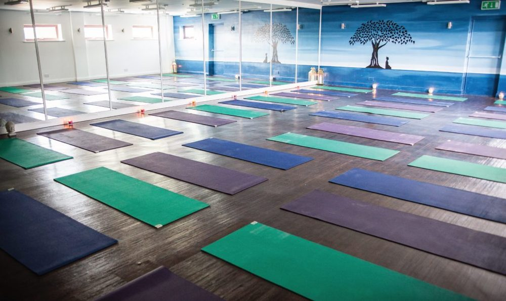 HOTYOGANIC-FACILITIES-YOGA2-1024x609.jpg
