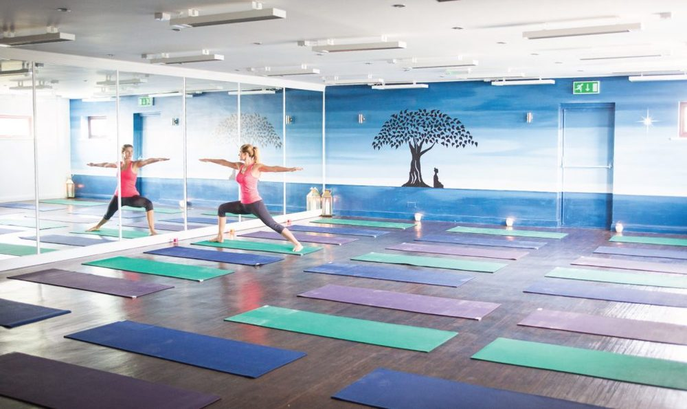 HOTYOGANIC-FACILITIES-YOGA3-1024x609.jpg
