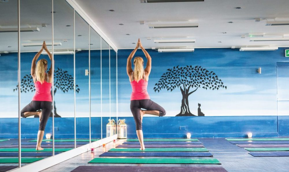 HOTYOGANIC-FACILITIES-YOGA4-1024x609.jpg