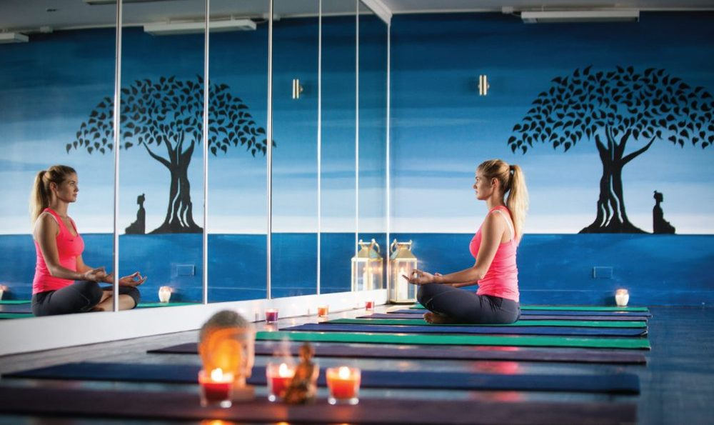 HOTYOGANIC-FACILITIES-YOGA5-1024x609.jpg
