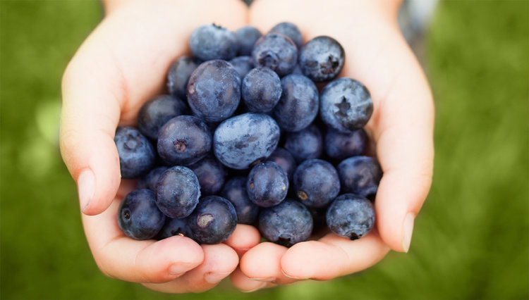 Benefits of Blueberries…and Jesus